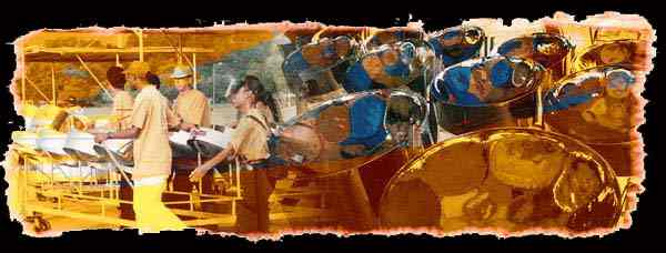 SteelPan Graphic